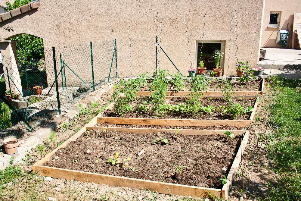 The Garden in June at Callaloo Soup -3