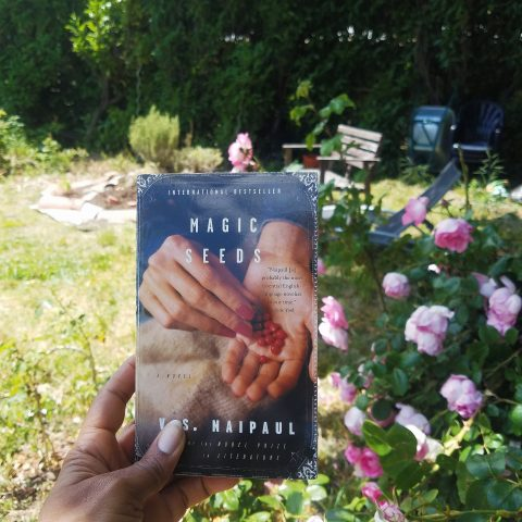 Magic Seeds by V S Naipaul in a rose garden